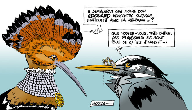 1-heron-huppe-ds