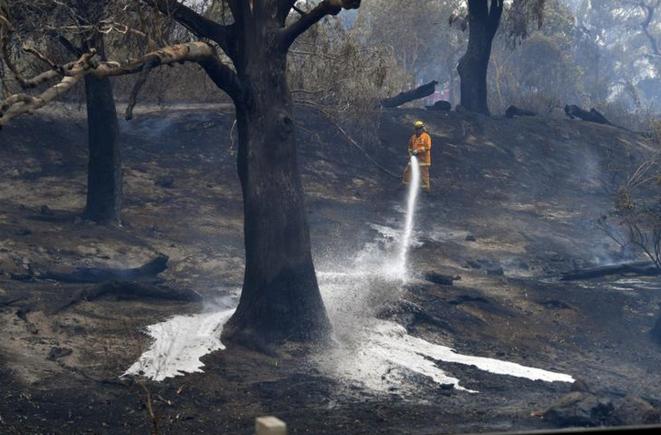 Un pompier près de Melbourne le 30 décembre 2019. © REUTERS