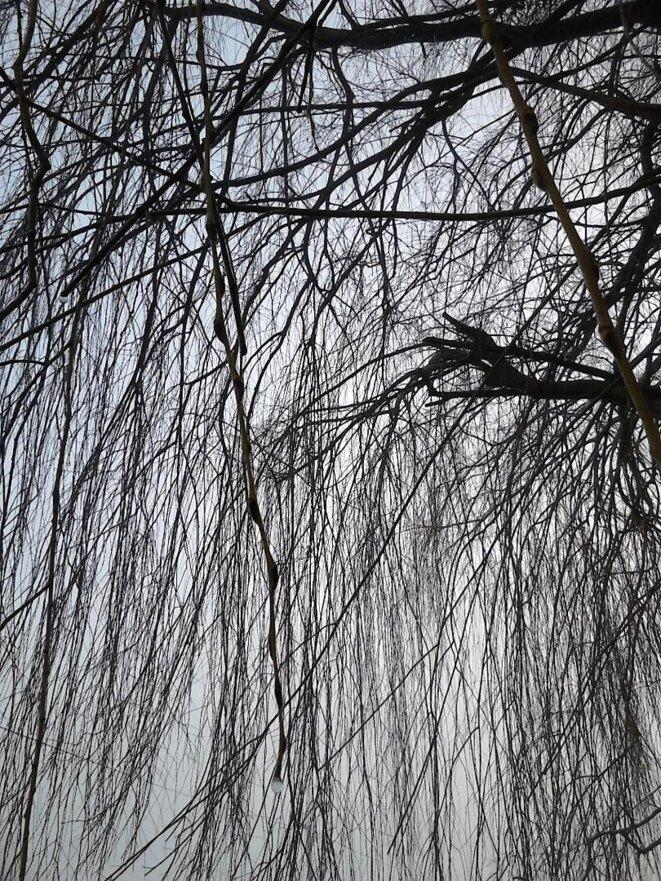 Silence © Maud Assila