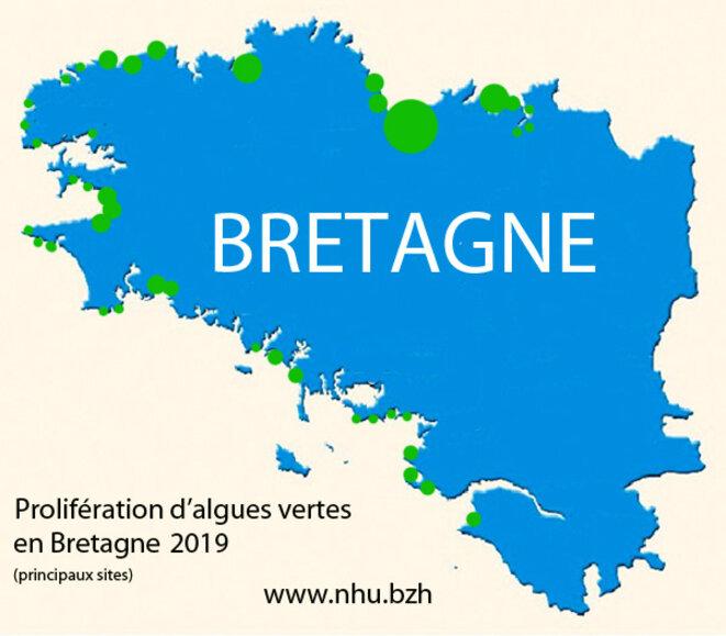 algues-vertes-bretagne-2019