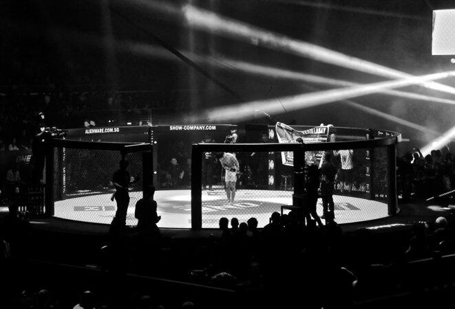 ONE Championship - Kallang (Singapour), 2016 - CC BY-SA 4.0