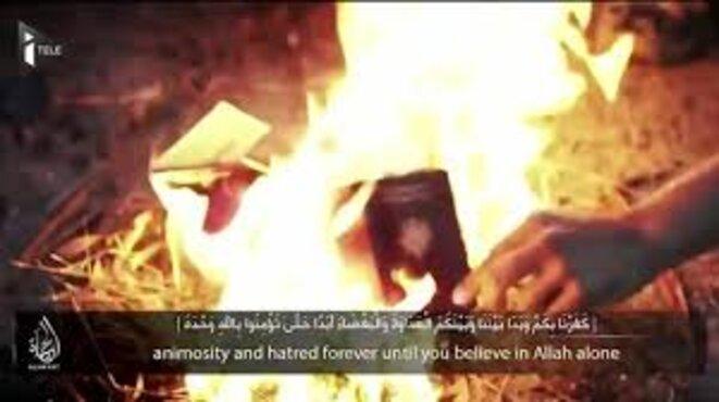 djihadistes-bru-lant-leur-passeport