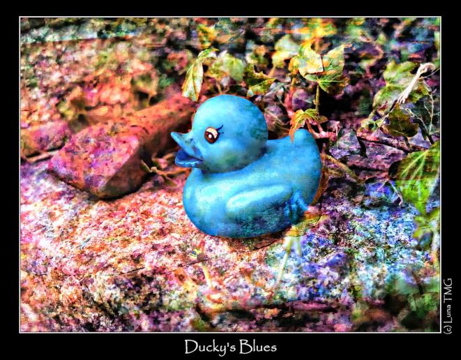Ducky's Blues / Le Blues du Caneton © Luna TMG