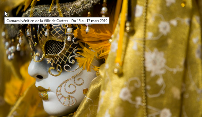 2020-02-07-17-10-17-carnaval-venitien-edition-2019-castres-2