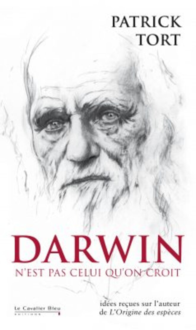 darwin-238x400