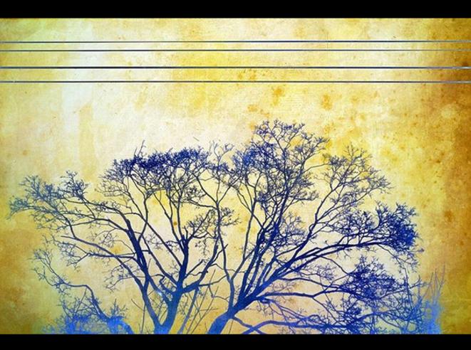 4 Lines / Lignes © Luna TMG