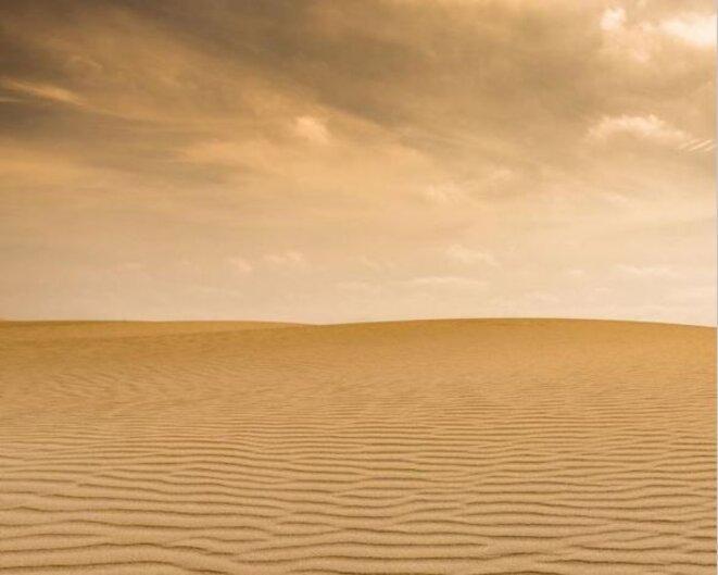 sahara-actuel