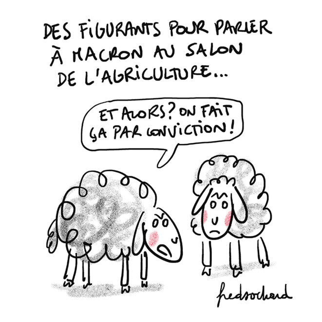 20-2-23-moutons