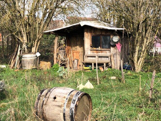 Dans les «petits jardins» collectifs des Lentillères, en février 2020. © JL