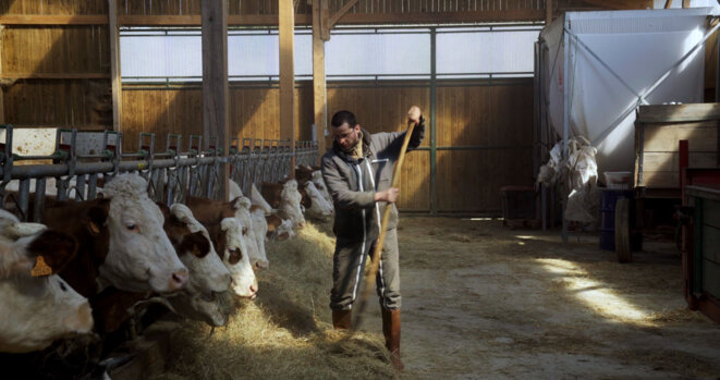 - Cyrille, agriculteur, les pieds dedans - © (c) ARP Sélection