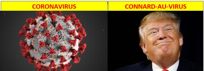 connard-au-virus