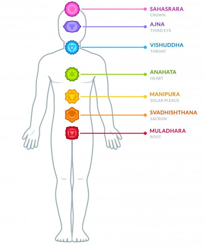 Les principaux chakras