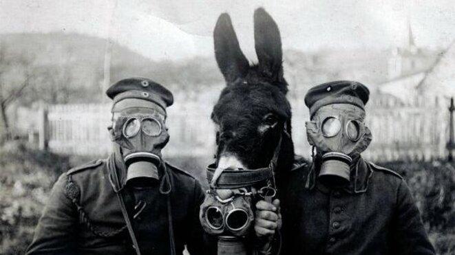 guerre-des-masques