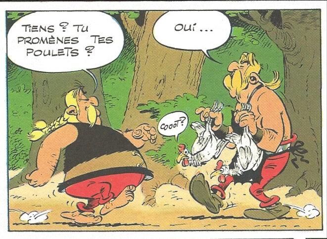 cetautomatix-poulets