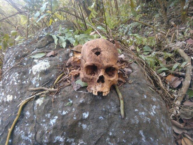 Crâne d'un Tupuna. 06.01.2020. Vallée de Hapa'a. Nuku Hiva. © Christian Tamahautini