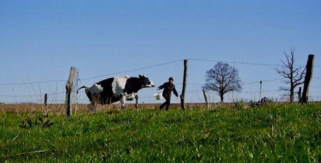 """Extrait de """"Les Vaches n'auront plus de nom"""". © Hubert Charuel"""
