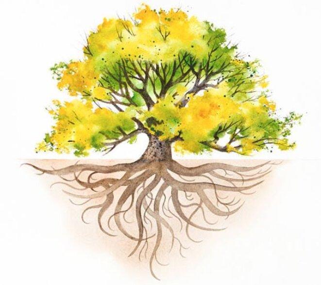 https://static.mediapart.fr/etmagine/default/files/2020/04/14/symbole-arbre-de-vie.jpg