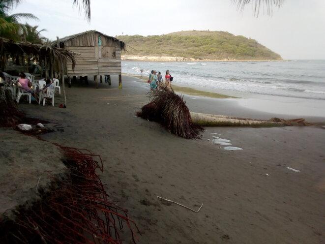 plage de la Villa Rica de Vera Cruz © licence creative commons CC BY Boris Carrier