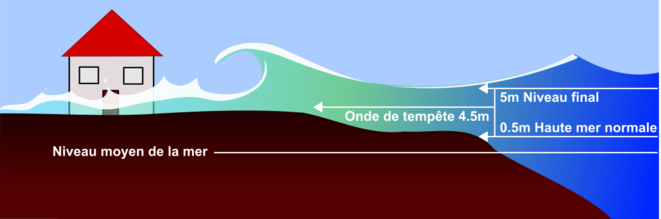 Image Wikipaedia