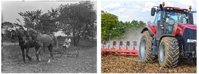En un siècle, les techniques de travail du sol ont légèrement changé