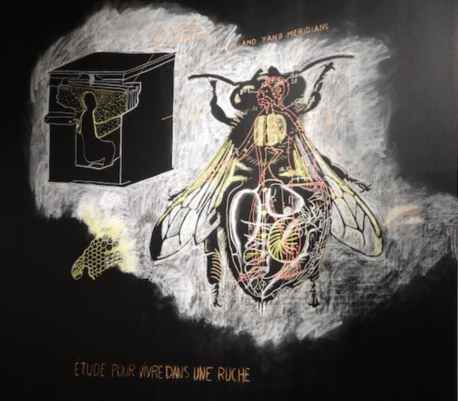 Etude pour vivre dans une ruche (détail), dessin mural de Abraham Poincheval à la craie de couleur, exposition l'Abeille blanche, Le Parvis/Musée de l'Invisible, Ibos, janvier 2020 (Photo Alain Alquier, détail).