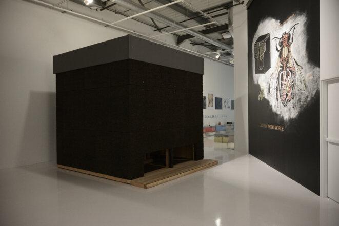 Vue de l'exposition L'Abeille blanche avec le dessin préparatoire de Abraham Poincheval (à droite) et la ruche polarisée de Olivier Raud.(Photo Alain Alquier).