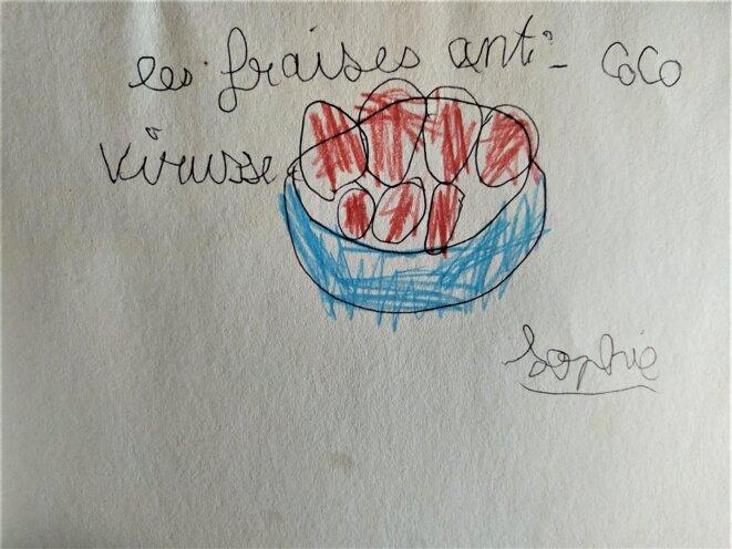 fraises-coco-virus
