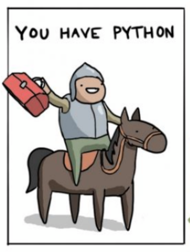 you-have-python