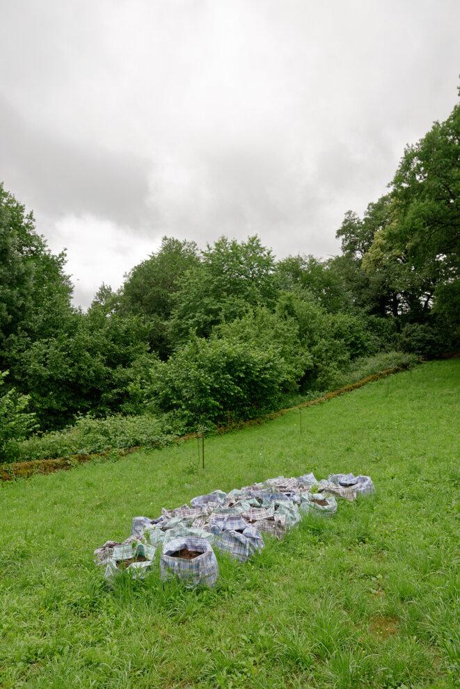 Lois Weinberger, Portable Garden, 1994. Œuvre installée dans la commune de La Villedieu. Collection du Centre national des arts plastiques. © Lois Weinberger / Cnap / Photo : Aurélien Mole