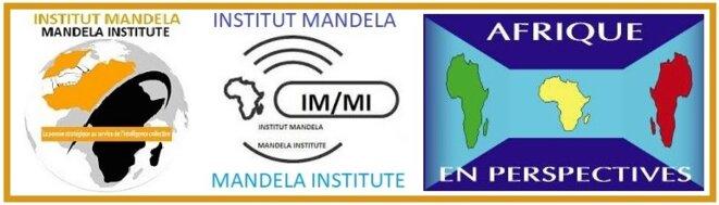 Institut Mandela