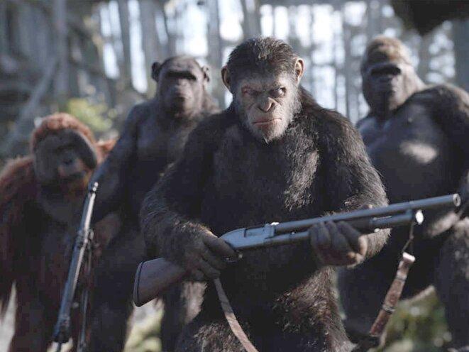 La Planète des singes/suprématie