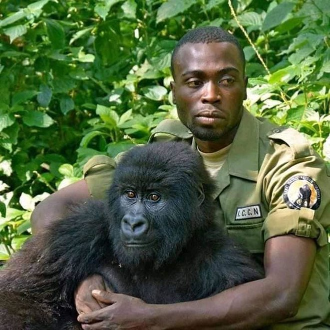 freddy-mulongo-virunga-1