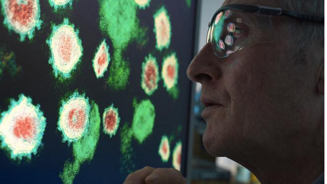 Un scientifique travaillant sur un virus dans un laboratoire. © AFP