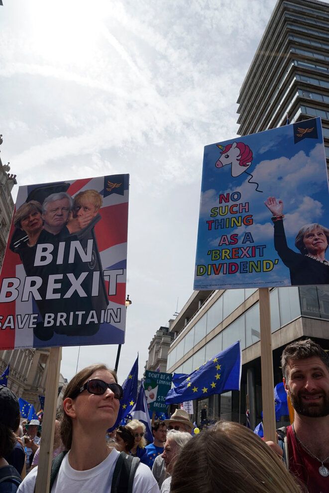 Bin Brexit Save Britain / No Such Thing As a Brexit Dividend © Sandra von Lucius