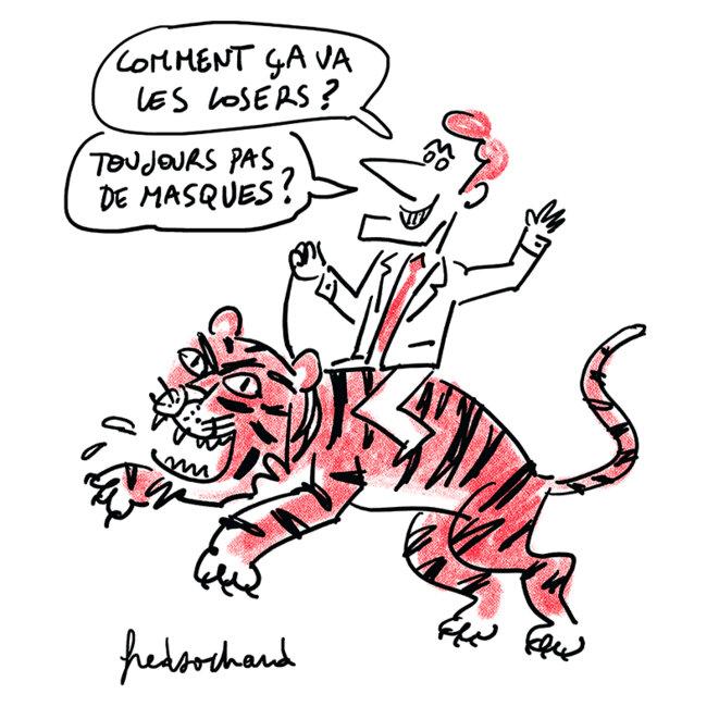 20-5-8-tigre