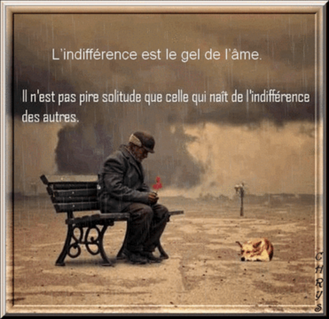 lindifference-png