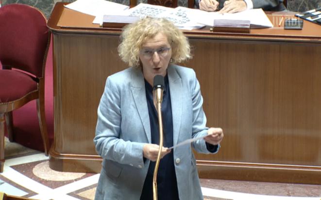La ministre du travail, Muriel Pénicaud, à l'Assemblée le 14 mai. © DR / Capture d'écran