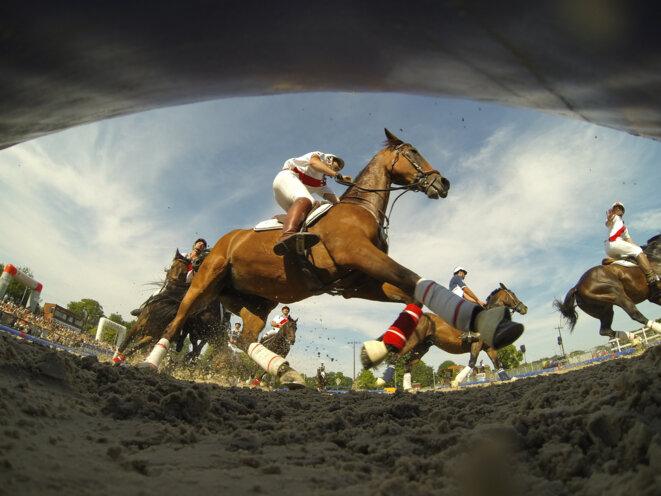 The Jardy equestrian centre near Paris, June 2014. © Christophe Bricot / DPPI via AFP