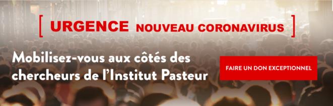 Site de l'Institut Pasteur. © DR
