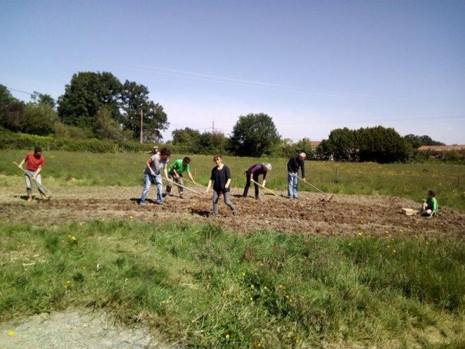 Premier chantier de plantation par le collectif Bocage a la patate. © DR