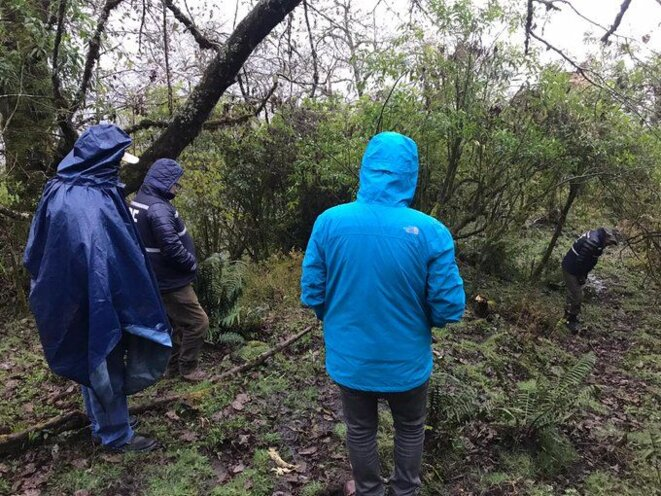 Ravin où le cadavre de Luis Espinoza a été trouvé © Telam