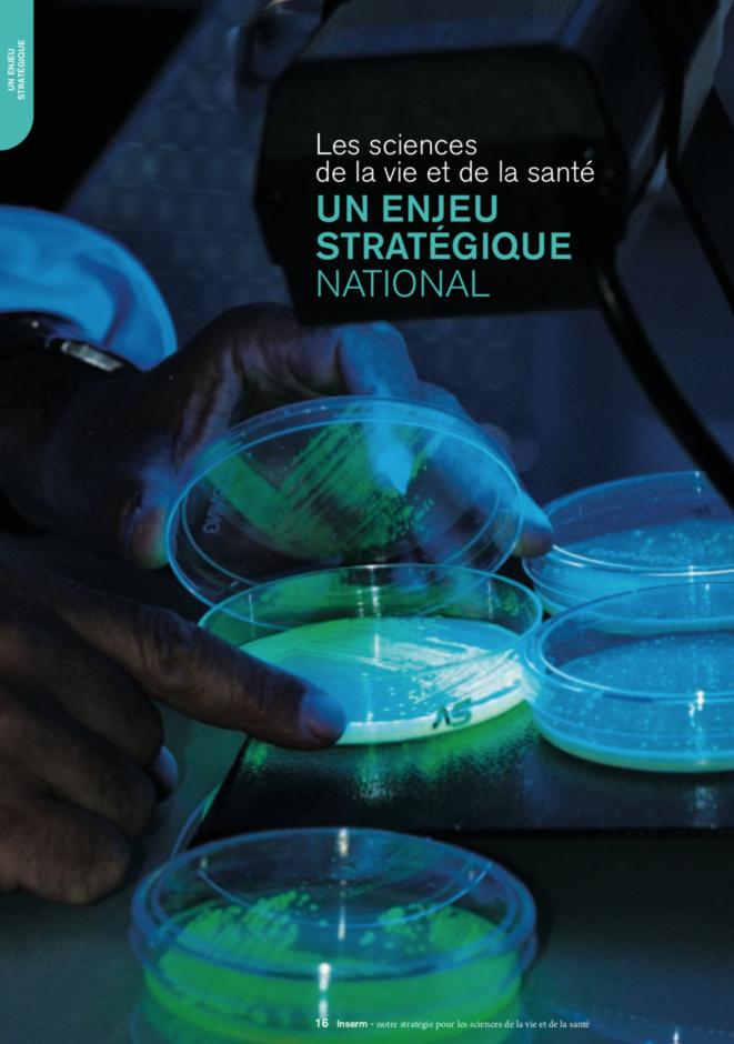 """En décembre 2009, l'Institut national de la santé et de la recherche médicale (Inserm) mettait en garde contre """"la réémergence de maladies infectieuses"""". © DR"""