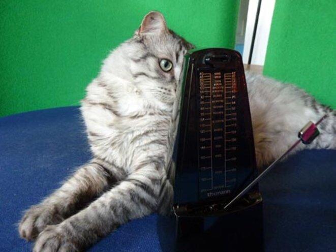 chat-metronome