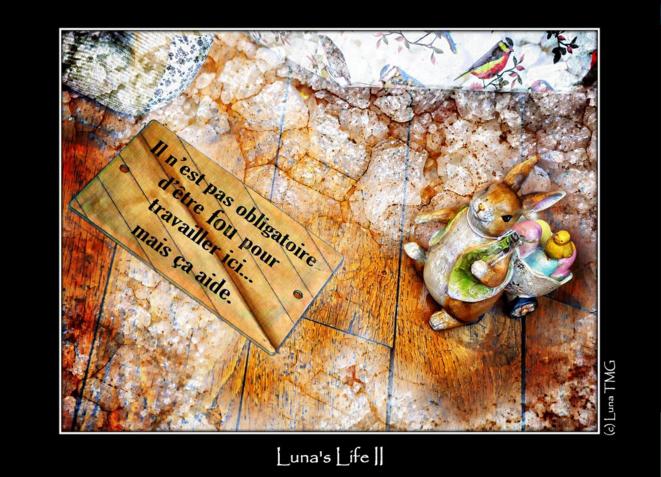 Luna's Lifz II © Luna TMG Flickr