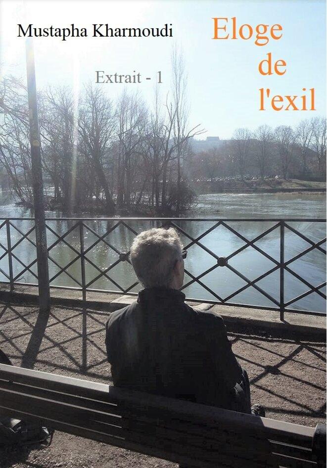 eloge-de-lexil-extrait-1