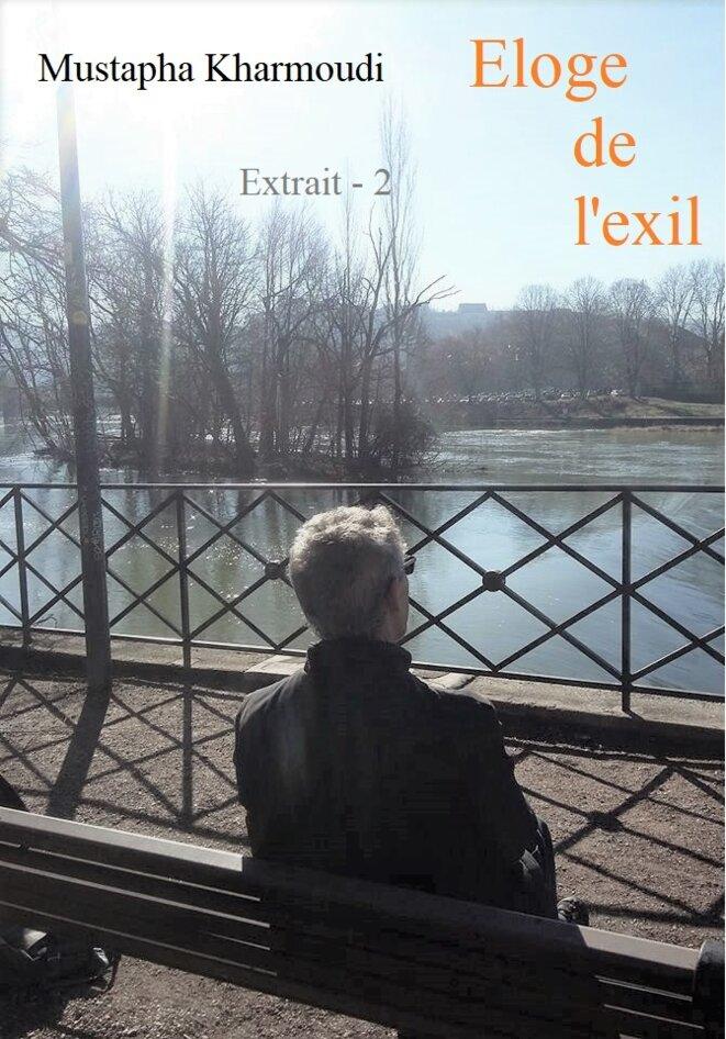 eloge-de-lexil-extrait-2