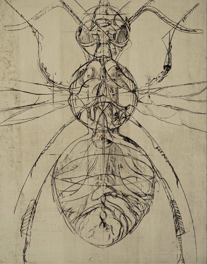 Charley Case, L'Abelium almanach, 2020,  gravure sur bois, 120 x 80 cm