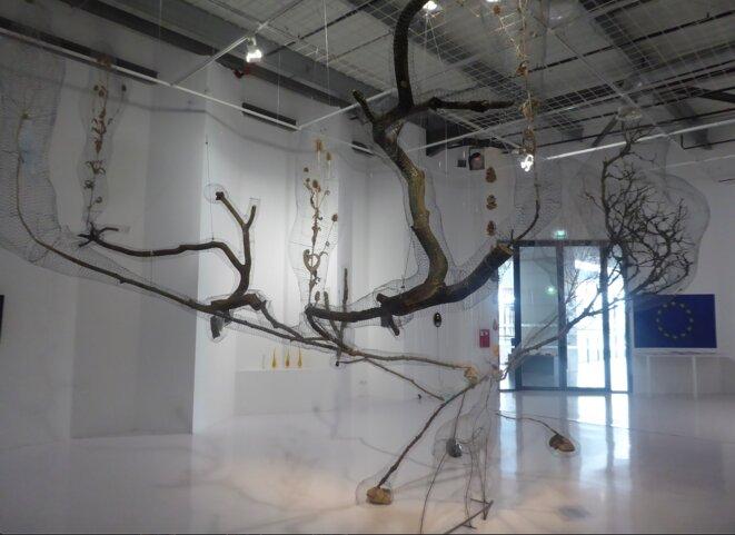 Jean-Luc Favero, Abeille vision, 2020 sculpture environnementale. Matériaux divers : grillage, squelette de chevreuil, herbes, plantes, pierres semi précieuses, 700 x 350 cm. (Photo Pascal Pique)