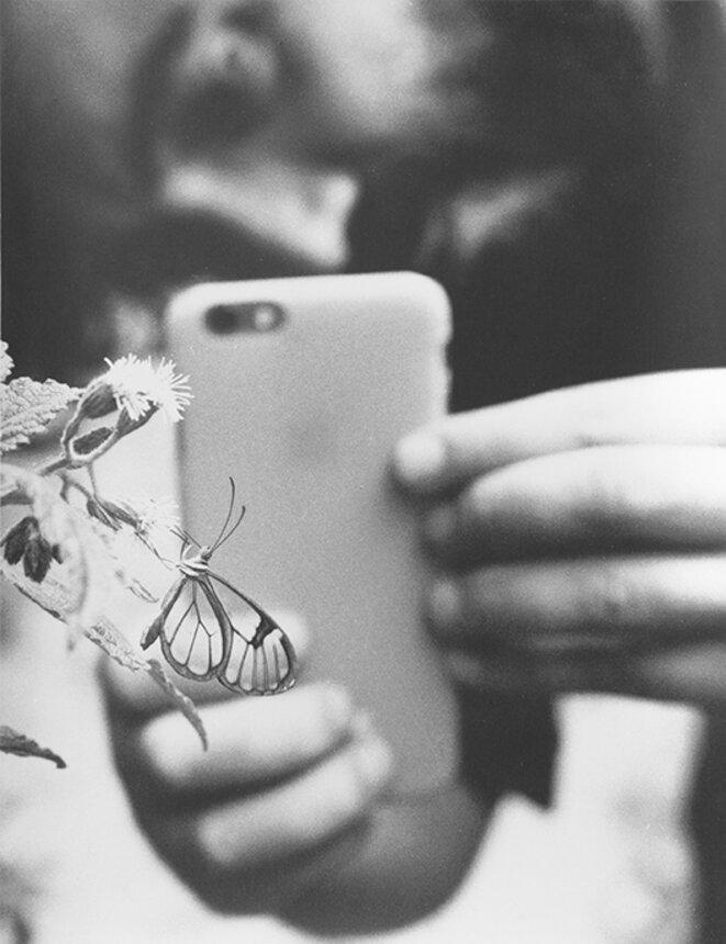 Untitled (Mobile), 2016 Photograhie noir/blanc sur papier baryté mat © Jochen Lempert / ADAGP, Paris 2020 Courtesy galeries : ProjecteSD (Barcelone) et BQ (Berlin)