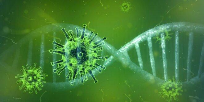 coronavirus-4833754-1920